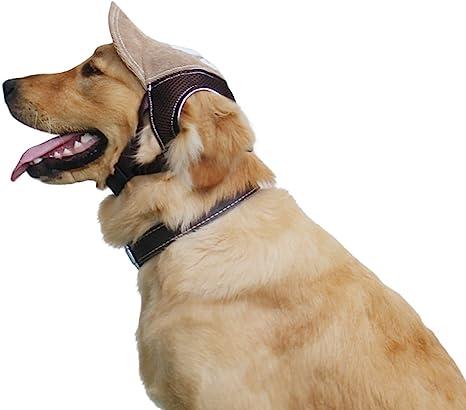 Gorra para perros, diseño de gorra de béisbol, para actividades al ...