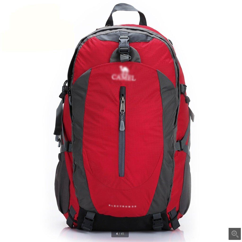 ハイキングバッグ アウトドアキャンプ50Lハイキングバッグ男性と女性旅行大容量のバックパック登山バッグ(サイズ:36 * 23 * 57センチメートル) ハイキングバックパック (色 : B) B