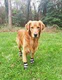 #10: All Weather Neoprene Paw Protector Dog Boots with Reflective Velcro Straps in 5 Sizes! (XL (4x3.75 in.)) Travel Zipper Case Included!