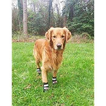 All Weather Neoprene Paw Protector Dog Boots with Reflective Velcro Straps in 5 Sizes! (XL (4x3.75 in.)) Travel Zipper Case Included!