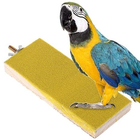 Vektenxi - Jaula para pájaros con plataforma para amolar patas ...