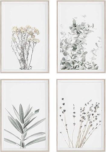 Botanical Plant Wall Art Print