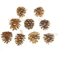 BESPORTBLE 9pcs Natural Pine Cones Christmas Rustic Pinecones Christmas Tree Fall Ornaments DIY Crafts Home Decorations