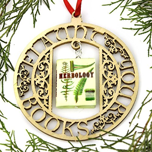 Magic Mini Book FRAMED Home Decoration Ornament by Book Beads ()