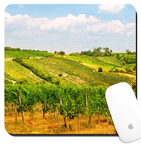 Luxlady Suqare Mousepad 8x8 Inch Mouse Pads/Mat design IMAGE ID: 22136824 Viennese green grapes wine yard Vienna - Vienna Images
