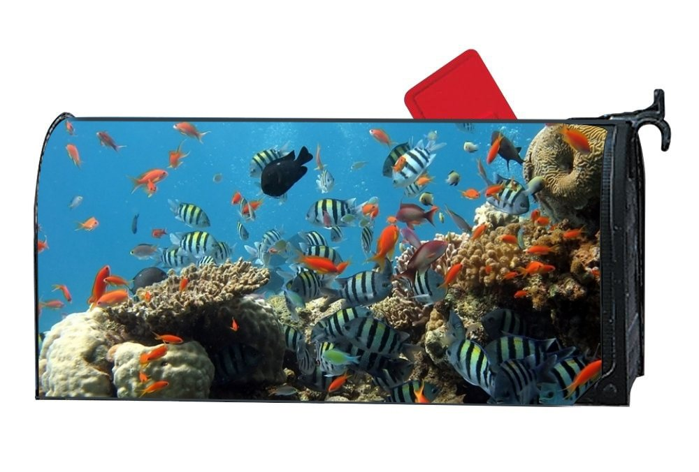 Penny McCarthy Coral Reef Bottom Fish Magnetic mailbox cover Home Magnetic
