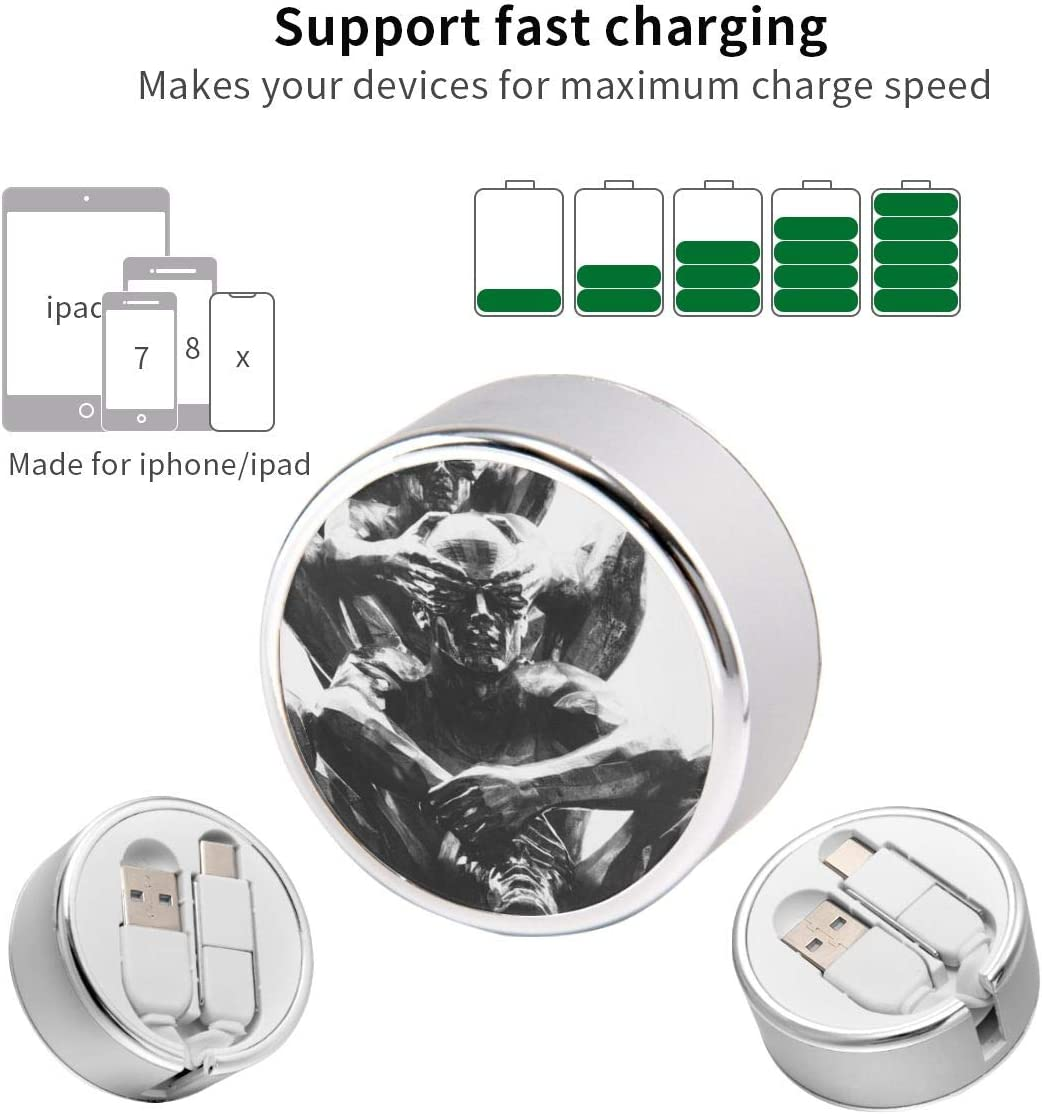 Round USB Data Cable Can Be Charged and Data Transmission Synchronous Fast Charging Cable-Gray Statue Charging Cable