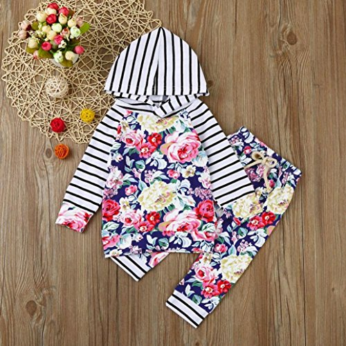 Omiky® 2pcs Kleinkind-Baby-Mädchen-Kleidungs-gesetzte BlumenHoodie Tops + Pants Outfits Mehrfarbig