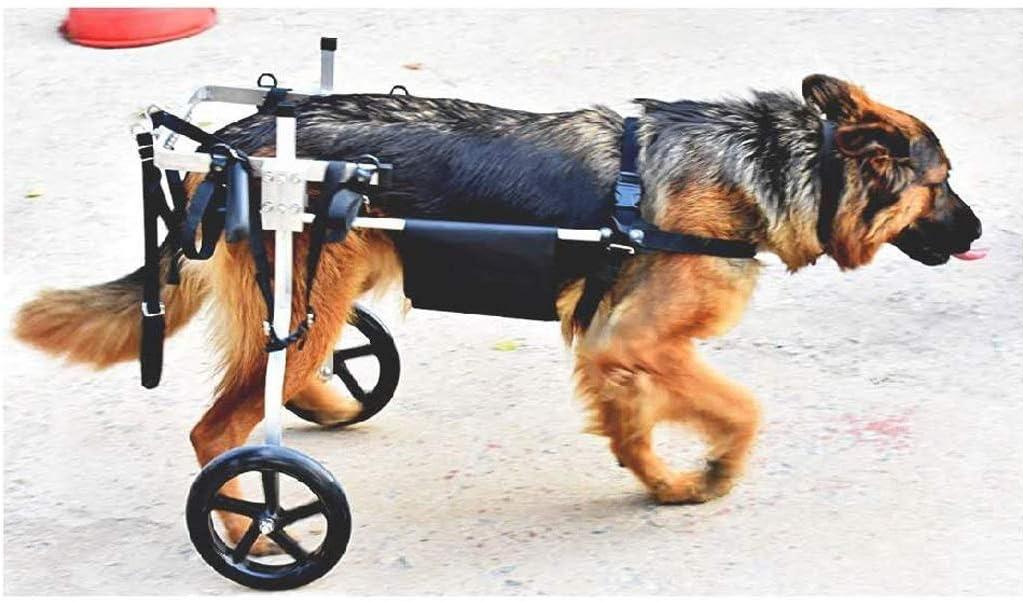 Knoijijuo Perro Perro Silla de Ruedas Silla de Ruedas Ruedas - kg para Perros medianos 15-60 - Veterinario comprobado - Silla de Ruedas para Las Patas traseras - para Perros,L