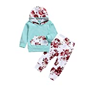 Infant Baby Kids Girl Flower T-shirt Hoodie Top+Pant+Headband 3pcs Outfits Set (12-18 Months, Style 1)