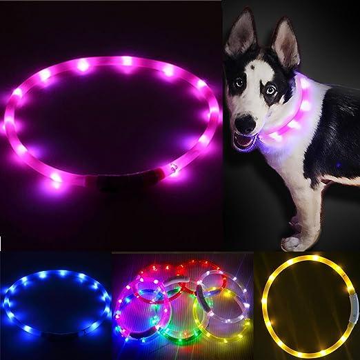 USB Recargable LED Perro Mascota Collar intermitente Tamaño Ajustable Seguridad Luz UK