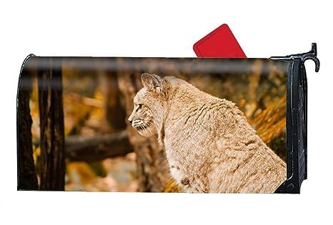06e604934c0e Amazon.com  Verna Christopher Animal Bobcats Design Magnetic Mailbox ...