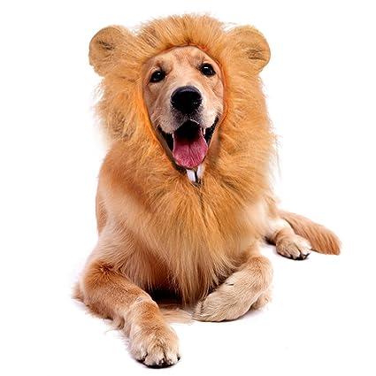 BESAZW Dog Halloween Costumes Dog Lion Mane Medium Large Dogs Pet Fancy  Dress Up Halloween