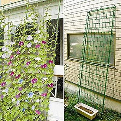 Hotaluyt Garden Green Vegetable Plant Trellis Netting Support Plant Climbing Grow Fence Garden Supplies