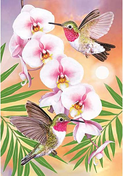 Full Drill feilin Hummingbird Embroidery Rhinestone Diamond Painting for Adult Cross Stitch Arts Craft Supply for Home Wall Decor DIY Gift Idea DIY 5D Diamond Painting by Number Kits