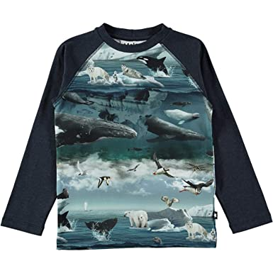45e915bb8c Molo Jungen Langarm T-Shirt mit beidseitigm Druck: Arktische Landschaft A08