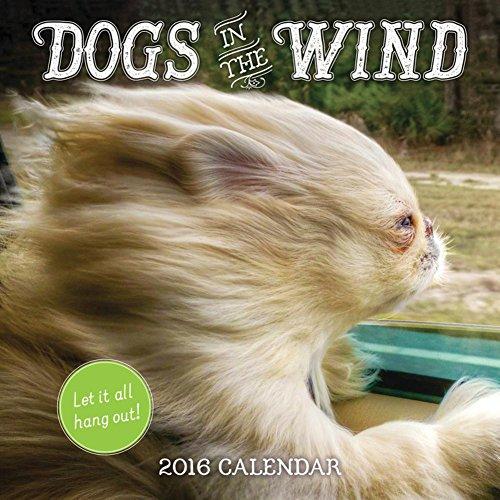 Dogs in the Wind - 2016 Calendar 12 x 12in