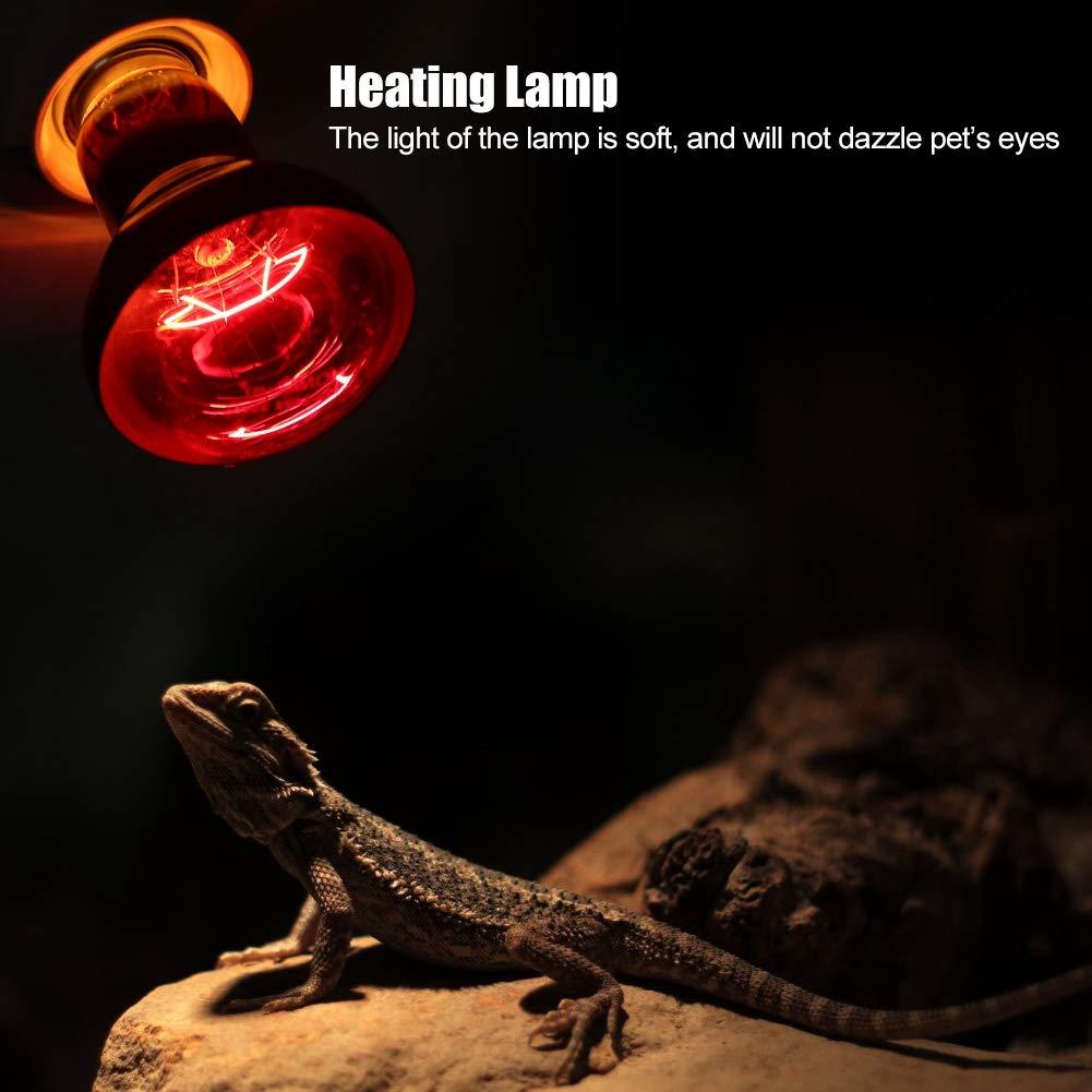 Pssopp Lampada di Calore a Raggi infrarossi 100W sicura Luce Morbida Non tossica Lampada di Riscaldamento Riscaldamento Luce Lampadina di Calore in Ceramica Fornitura di Animali