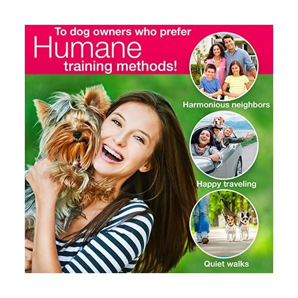 DogRook Dog Bark Collar- Humane Anti Barking Training Collar – Vibration No Shock Dog Collar – Stop Barking Collar for Small Medium Large Dogs – Best No Barking Control Dog Collar