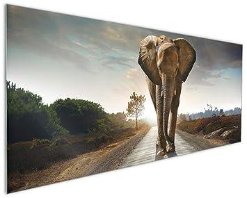 Wallario Küchen-Rückwand | Glas mit Motiv Elefant bei Sonnenaufgang ...