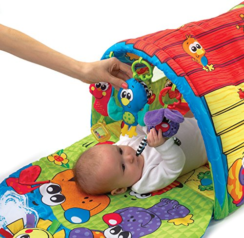Playgro Puppy Playtime Tunnel Gym for Baby Toy