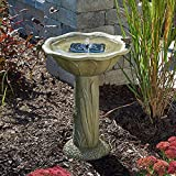 Smart Solar 20633R01 Acadia Solar Birdbath, Olive Green Finish With Relief Of Cat Tails And Frogs Playfully Climbing The Pedestal, Requires No Wiring or Operating Costs