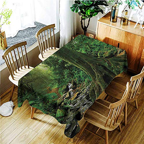 TT.HOME Small Rectangular Tablecloth,Forest Rain Forest Scenery with River in The North Forest in The Early Morning Humid Fog Print,Resistant/Spill-Proof/Waterproof Table Cover,W52x70L,Green
