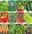 Garden Vegetable and Herb Seed Variety, Non GMO, Easy Growers (Pack of 12)