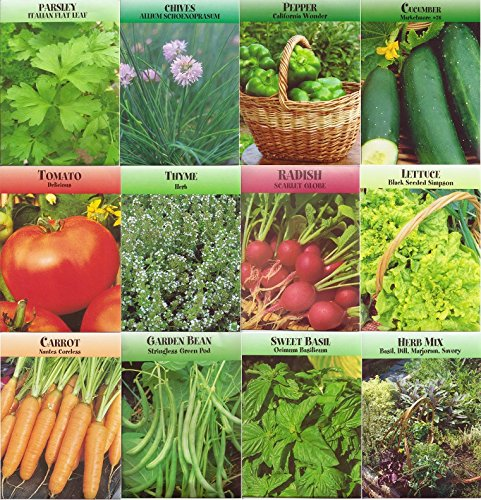 garden-vegetable-and-herb-seed-variety-non-gmo-easy-growers-pack-of-12