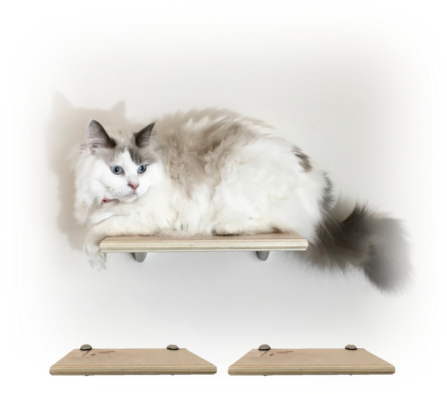 Set of 2 Choose wood /& bracket finish Contempo Floating Cat Shelf 12 by Purrfectly Catastic Handcrafted Wall Mounted space saving cat climbing activity tree steps shelves furniture