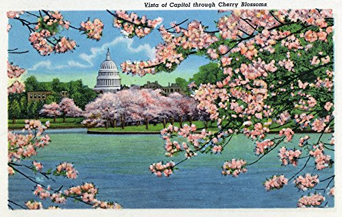 (Washington DC - Vista of the Capitol through the Cherry Blossoms - Vintage Halftone (24x36 SIGNED Print Master Giclee Print w/Certificate of Authenticity - Wall Decor Travel Poster))