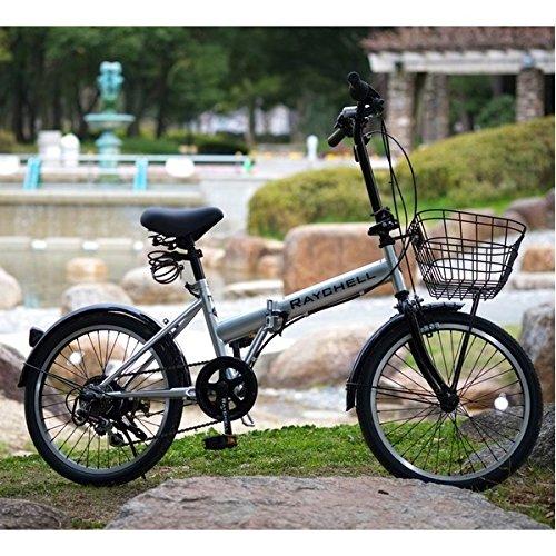 折りたたみ自転車 20インチ/シルバー(銀) シマノ6段変速 ノーパンク仕様 【Raychell】 レイチェル R-241N【代引不可】 生活用品 インテリア 雑貨 自転車(シティーサイクル) 折り畳み自転車 [並行輸入品] B01EOAQC94