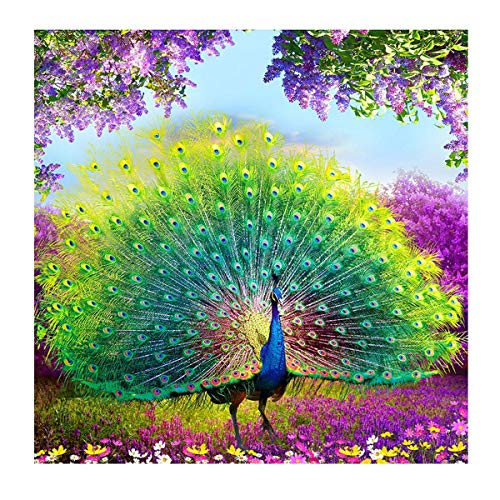 - MXJSUA DIY 5D Diamond Painting by Number Kits Round Drill Rhinestone Cross Stitch Picture Craft for Home Wall Decor 14x14In Green Peacock
