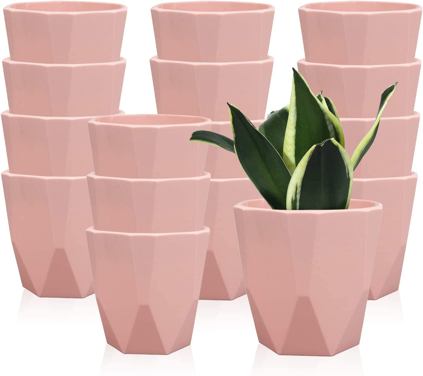 3.7 Inches / 16 pcs Plastic Plant Pots, Gardening Containers, Planters, Perfect for Indoor and Outdoor Decoration, Garden, Kitchen, Flower, Succulents (Pink)