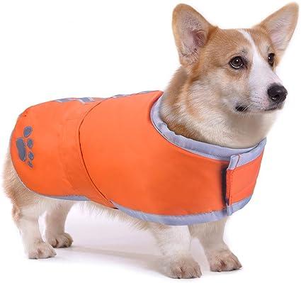 Rojo abrigo de perro salchicha abrigo para perro salchicha con forro polar acolchado M Morezi dachshund abrigos ropa de exterior para perros con bandas ajustables