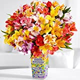 ProFlowers - 25 Count Multi-Colored 0 100 Birthday Blooms w/Free Vase - Flowers