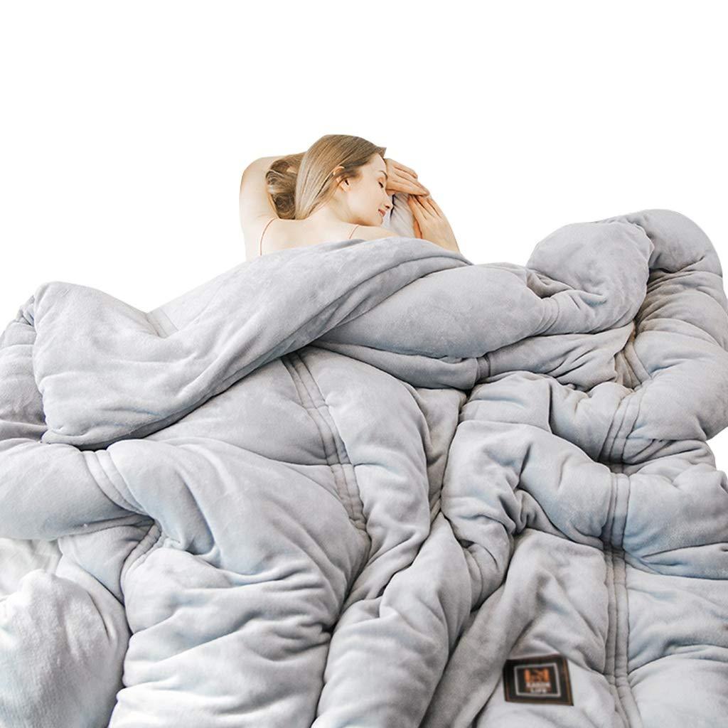 空調ブランケット、快適な冬の厚いソフトコールドプロテクションダブルピープルキルトベッドルームホテルバルコニーソファーブランケット (色 : Gray, サイズ さいず : 200*230cm-4kg) B07KYNNPNR Gray 200*230cm-4kg