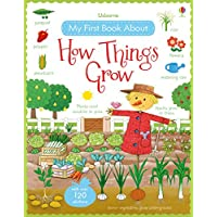 Brooks, F: My First Book About How Things