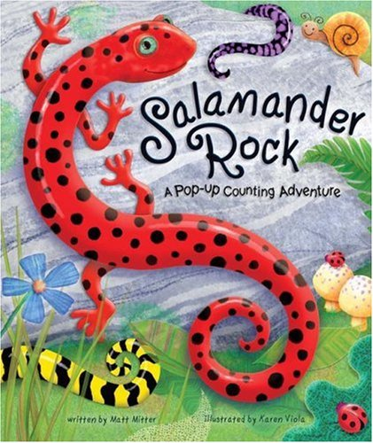 (Salamander Rock: A Pop Up Counting Book (Pop-Up Counting Books))