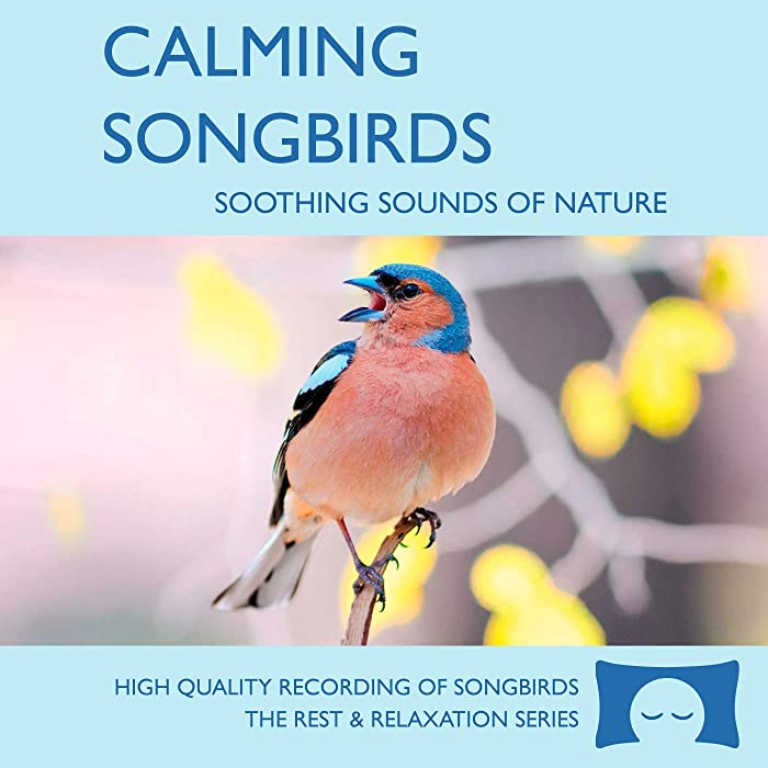 Calming Songbirds - Nature Sounds Recording Of Bird Calls - For Meditation, Relaxation and Creating a Soothing Atmosphere - Nature's Perfect White Noise -