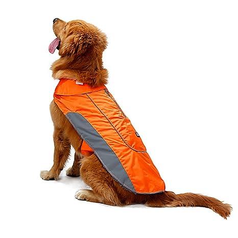 Akemiao Perro abrigo invierno cálido chaqueta mascota ropa con ...