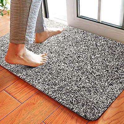 Delxo 24 x 36 Inch Magic Doormat