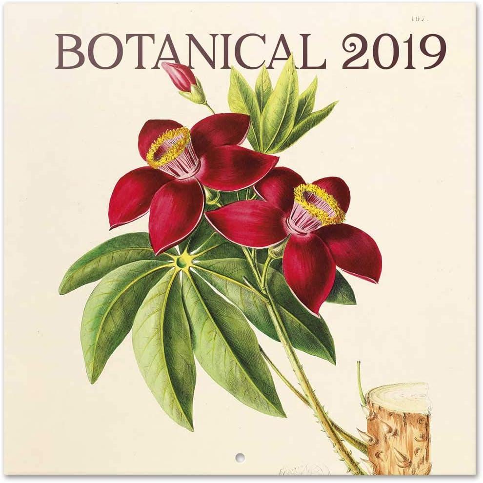 Grupo Erik - Calendario Da Muro 2019 Botanical 30 X 30 Cm
