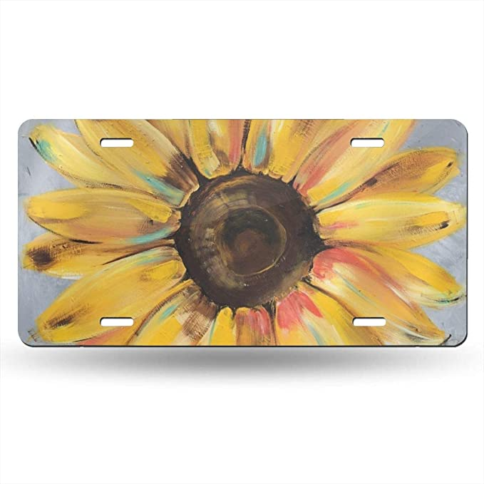 6 X 12 Inch MSGUIDE Van Gogh Starry Sky Personalized Front License Plate Cover,Novelty Aluminum Metal Car Vanity Tag Plates Decorative for Men Women Girl Gift