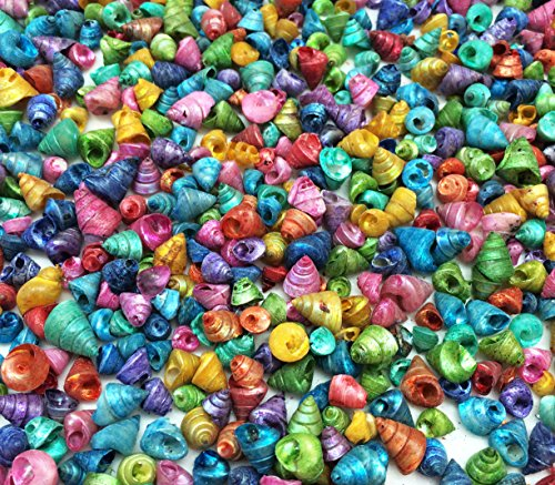 (PEPPERLONELY Dyed Assorted Colors Trochus Tiny Sea Shells, 8 OZ Apprx.2500+ PC Shells, 1/4 Inch)