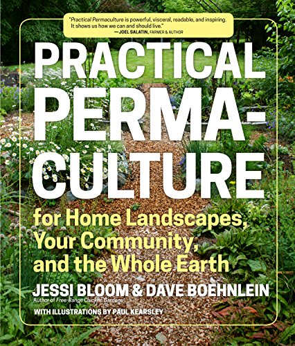 Practical Permaculture: for Home Landscapes, Your Community, and the Whole Earth by [Bloom, Jessi, Boehnlein, Dave]