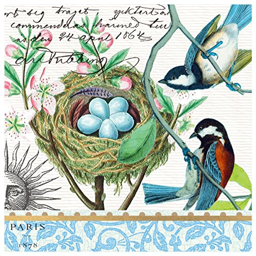 Michel Design Works 20-Count 3-Ply Paper Luncheon Napkins, Bird Nest