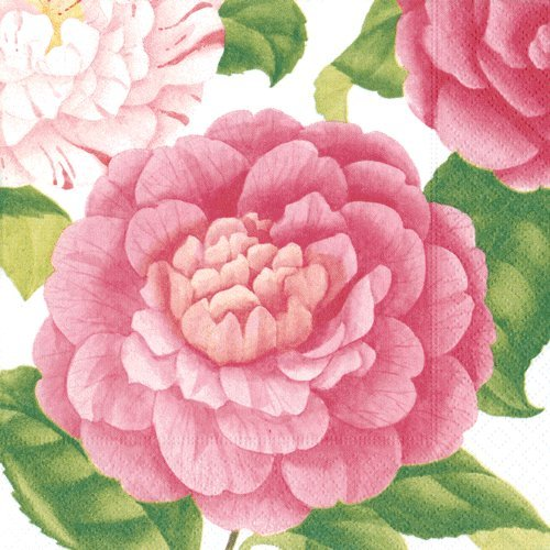 Dessert Napkins Paper Napkins Baby Shower Bridal Shower Garden Party Camellias Pk 40 -