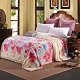 BEIZLSS Style of marriage flowers/Floral Striped Blankets in thick polyester-T 180220cm (71x87cm)