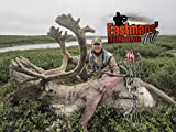 Bowhunting Caribou in Quebec